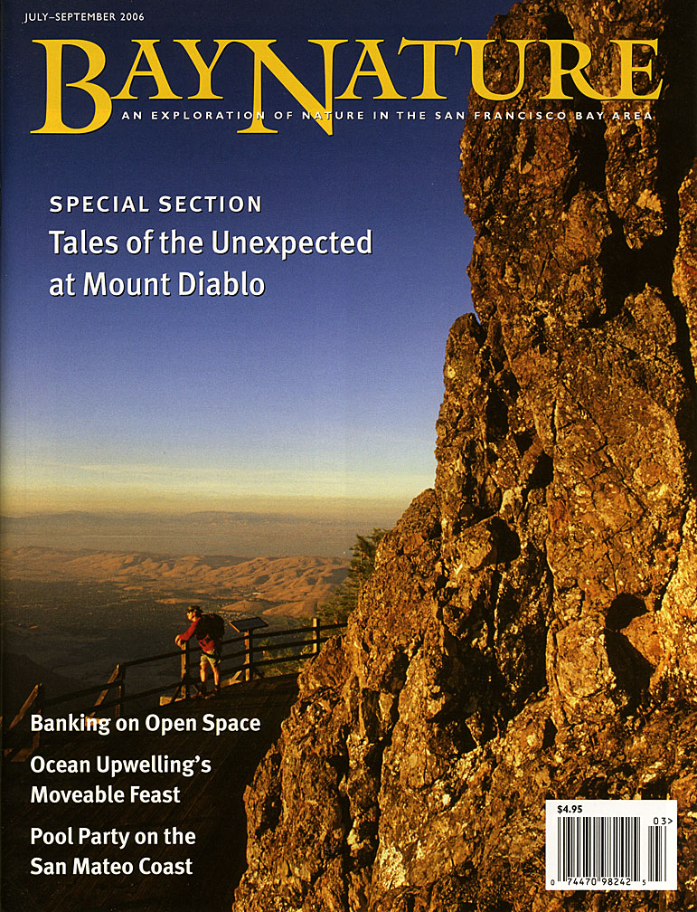 Bay Nature magazine cover - July 2006