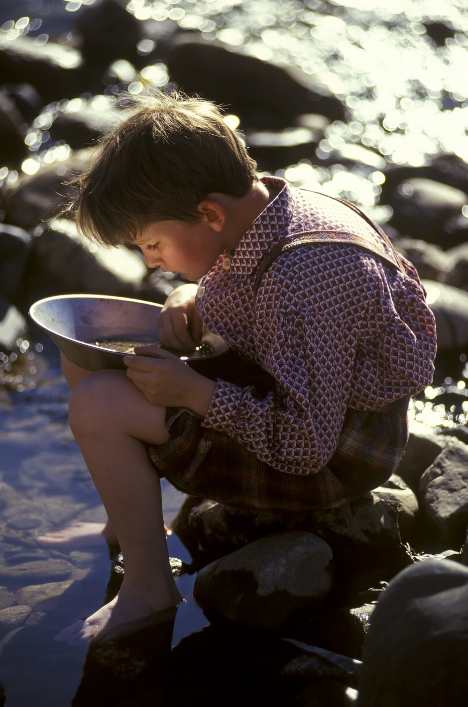 USA: California: GoldCountry: Coloma: Gold panning along the American River