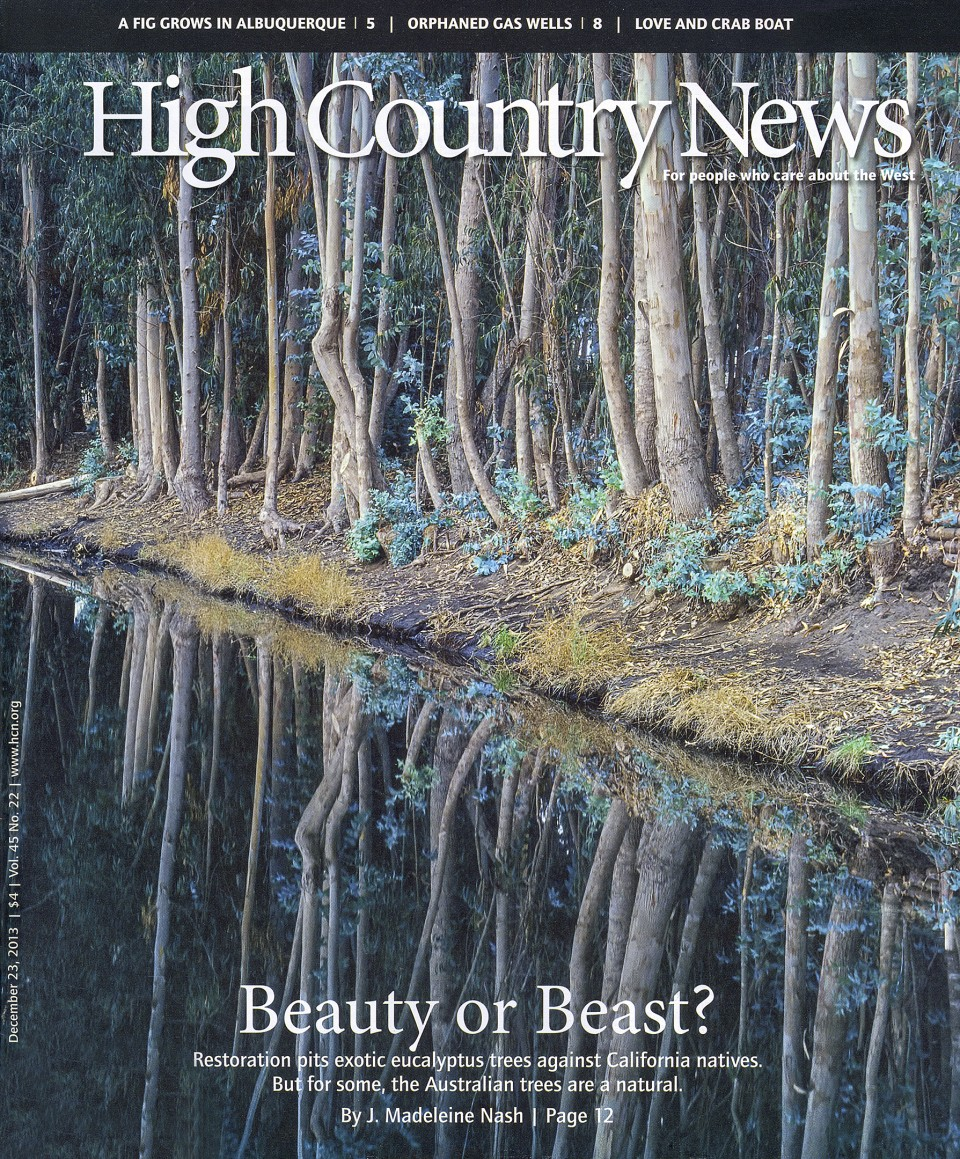 High Country News magazine - December 2013